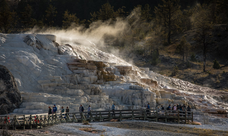 Yellowstone mammoth hotsprings