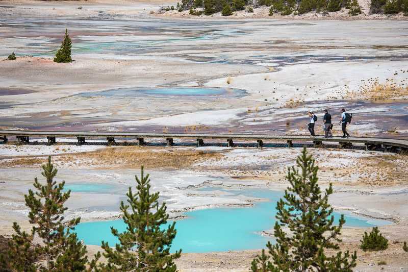 Yellowstone photography workshop